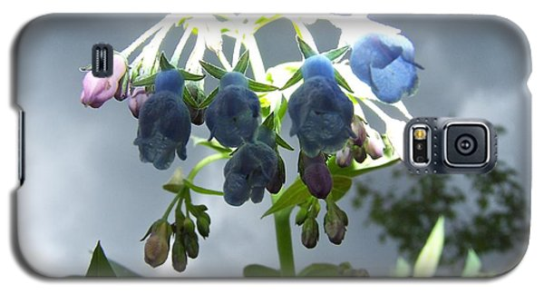 Stormy Bluebells Galaxy S5 Case