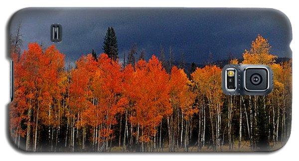 Stormy Galaxy S5 Case by Brenda Pressnall