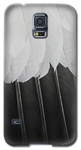 Stormy Feathers Galaxy S5 Case by Judy Whitton