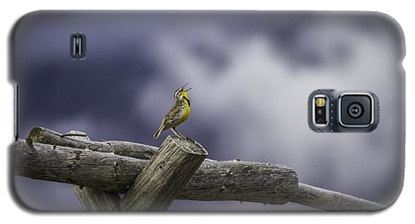 Stormy Weather And A Sweet Song Galaxy S5 Case by Thomas Young