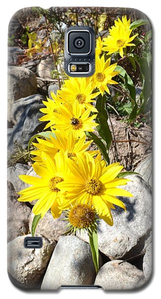 Strand Of Flowers Galaxy S5 Case by Dacia Doroff
