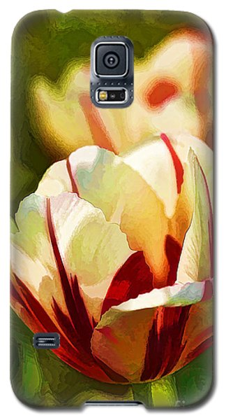 Strawberries And Cream Galaxy S5 Case by Linda Blair