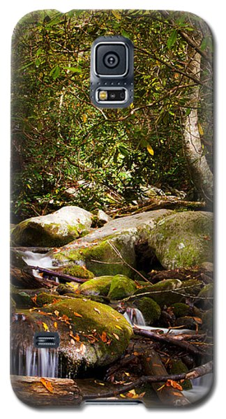 Stream At Roaring Fork Galaxy S5 Case