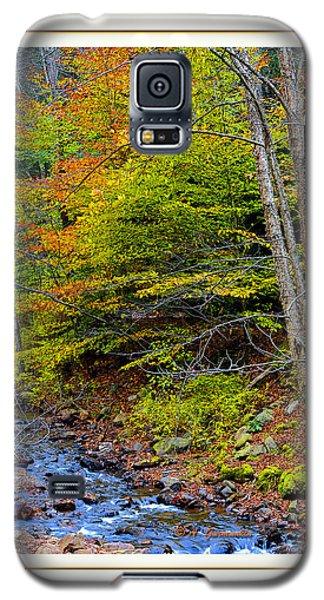 Galaxy S5 Case featuring the photograph Stream In Autumn Pocono Mountains Pennsylvania by A Gurmankin