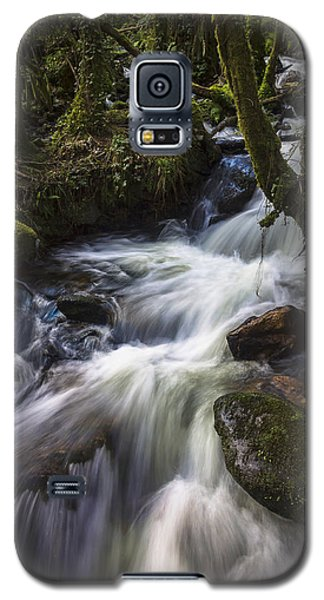 Galaxy S5 Case featuring the photograph Stream On Eume River Galicia Spain by Pablo Avanzini