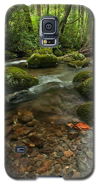 Galaxy S5 Case featuring the photograph Stream With The Color Of Early Fall. by Debbie Green