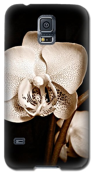 Strength And Beauty Sepia Galaxy S5 Case