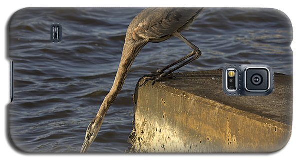 Galaxy S5 Case featuring the photograph Stretch - Great Blue Heron by Meg Rousher
