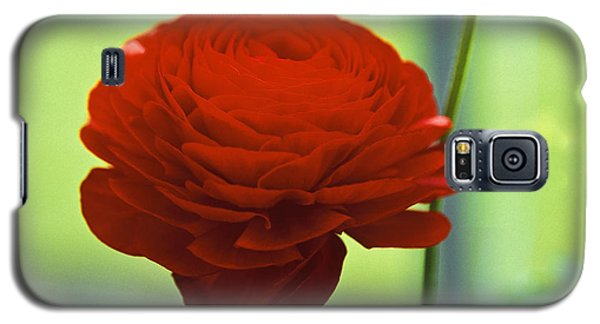 Galaxy S5 Case featuring the photograph Striking Red by Lana Enderle