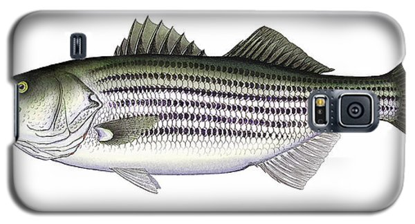 Striped Bass Galaxy S5 Case