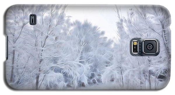 Stroll Through A Winter Wonderland Galaxy S5 Case by Diane Alexander
