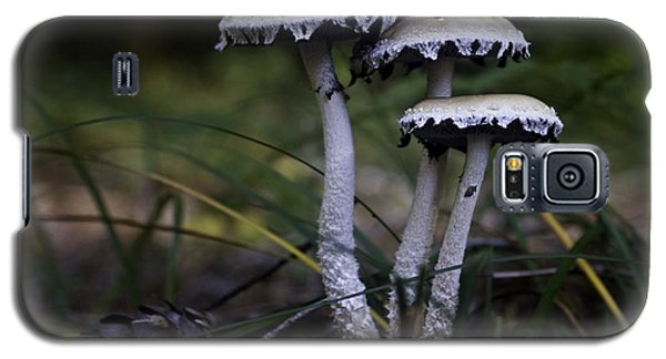 Galaxy S5 Case featuring the photograph Stropharia Ambigua by Betty Depee
