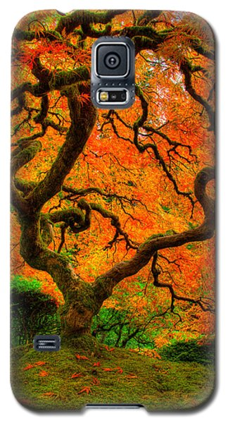Structured Beauty Galaxy S5 Case