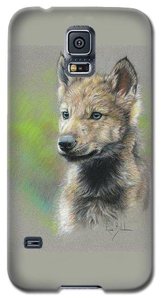 Study - Baby Wolf Galaxy S5 Case
