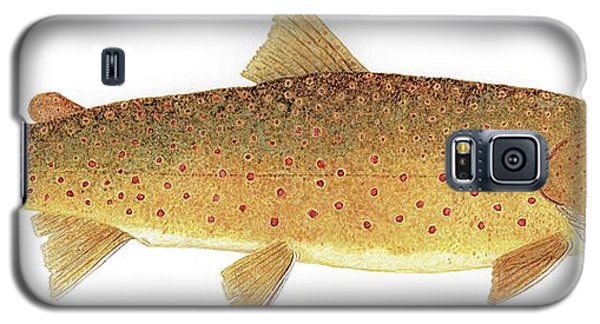 Study Of A Bull Trout Galaxy S5 Case
