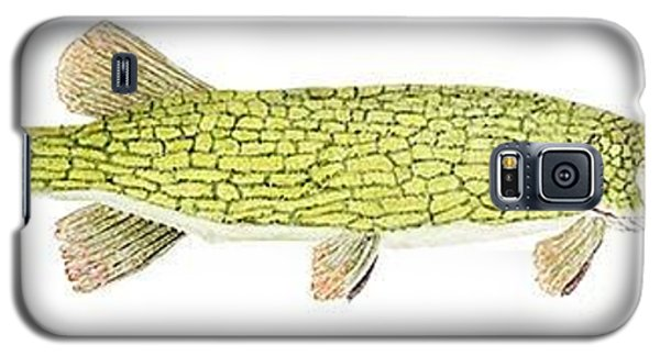 Study Of A Chain Pickerel Galaxy S5 Case