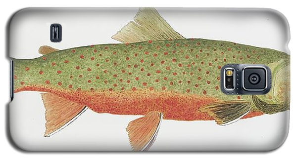 Study Of A Male Dolly Varden Char Galaxy S5 Case by Thom Glace
