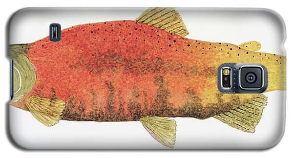 Study Of A Male Kokanee Salmon In Spawning Brilliance Galaxy S5 Case