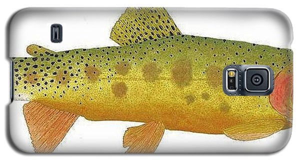 Study Of A Rio Grande Cutthroat Trout Galaxy S5 Case