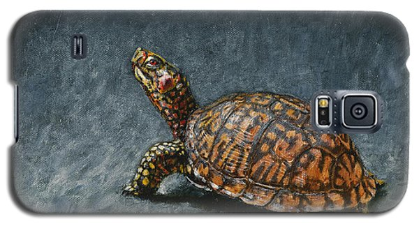 Reptiles Galaxy S5 Case - Study Of An Eastern Box Turtle by Dreyer Wildlife Print Collections