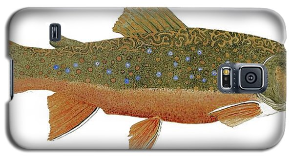 Study Of An Wild Eastern Brook Trout  Galaxy S5 Case