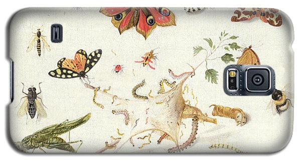 Ant Galaxy S5 Case - Study Of Insects And Flowers by Ferdinand van Kessel