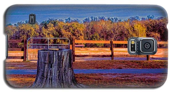 Stump Still Standing Galaxy S5 Case by Lewis Mann