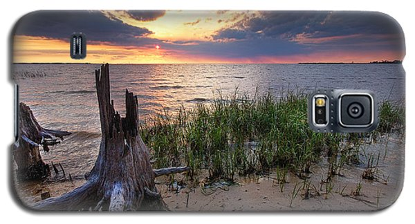 Stumps And Sunset On Oyster Bay Galaxy S5 Case by Michael Thomas