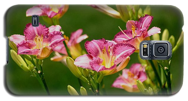 Stunning Day Lilies Galaxy S5 Case by Living Color Photography Lorraine Lynch