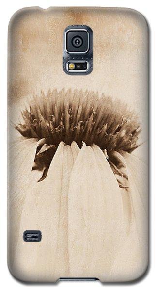 Subtlety Galaxy S5 Case by Kelly Nowak