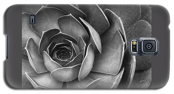 Succulent In Black And White Galaxy S5 Case by Ben and Raisa Gertsberg