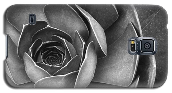 Succulent In Black And White Galaxy S5 Case
