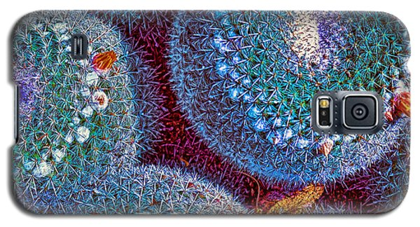 Succulent Sunset Galaxy S5 Case