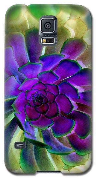 Succulent Transformation Galaxy S5 Case by Antonia Citrino