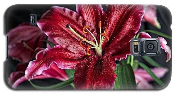 Sumatran Lily Galaxy S5 Case by Dave Files