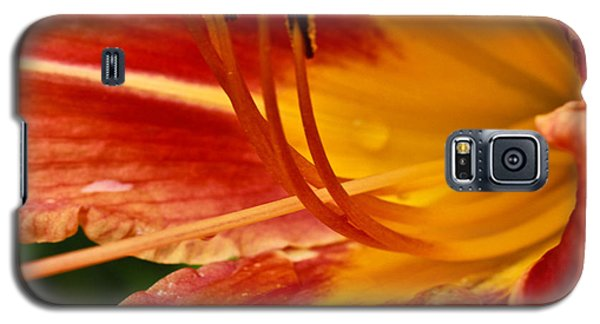 Galaxy S5 Case featuring the photograph Summer Daylily by Julie Andel