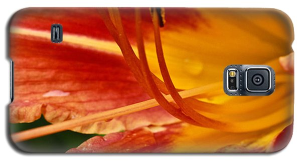 Summer Daylily Galaxy S5 Case