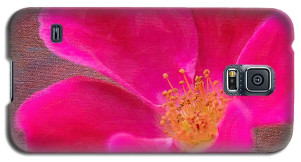 Summer Delight My Pink Rose Galaxy S5 Case by Denyse Duhaime