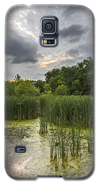 Summer Evening Clouds Galaxy S5 Case