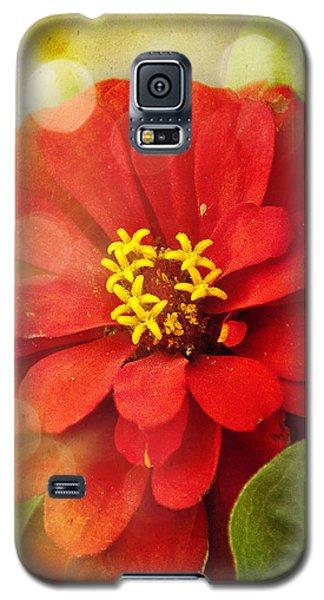 Summer Fire Galaxy S5 Case by Tammy Wetzel