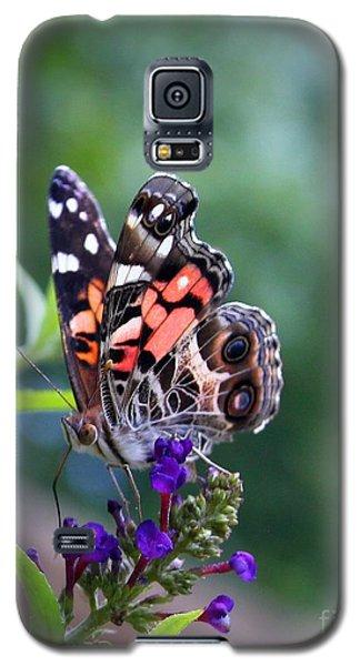 Galaxy S5 Case featuring the photograph Summer Flutter by Geri Glavis