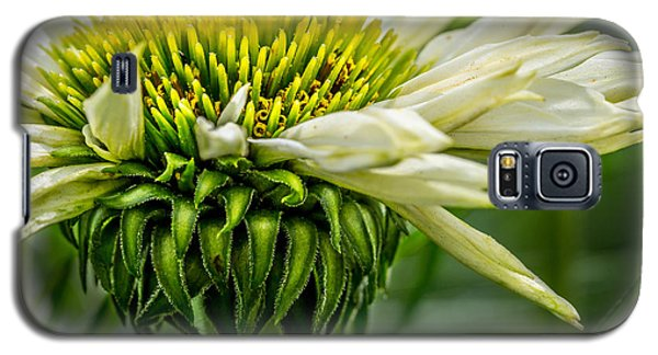 Summer Garden 1 Galaxy S5 Case by Susan Cole Kelly Impressions