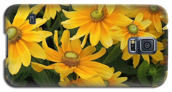 Summer Gold Galaxy S5 Case by Teresa Schomig