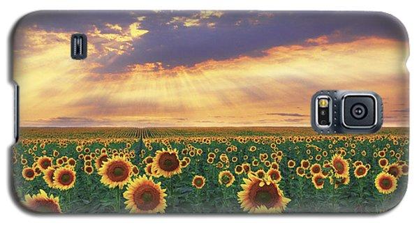 Galaxy S5 Case featuring the photograph Summer Haze by Kadek Susanto
