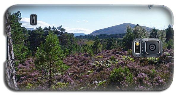 Summer In Abernethy Forest Galaxy S5 Case