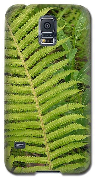 Summer In Alaska Galaxy S5 Case