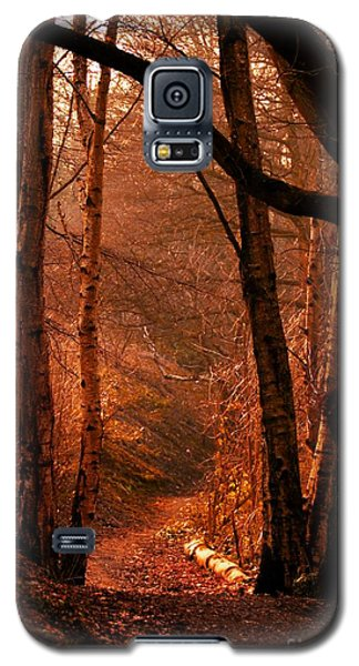 Summer In Sots Hole Galaxy S5 Case