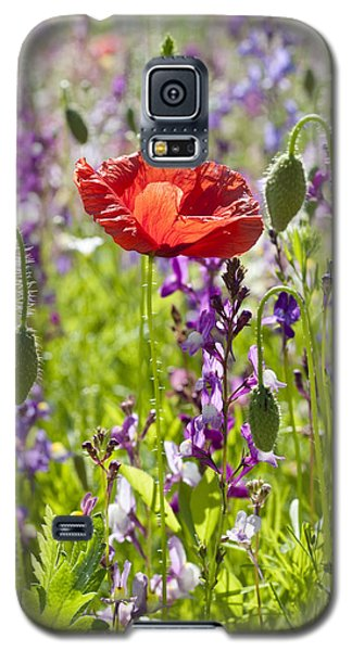 Galaxy S5 Case featuring the photograph Summer by Lana Enderle