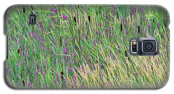 Galaxy S5 Case featuring the photograph Summer Marsh by Alan L Graham