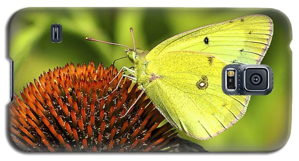 Galaxy S5 Case featuring the photograph Summer Meadow  by Adam Olsen